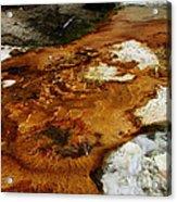 Detail Mammoth Springs Yellowstone Acrylic Print