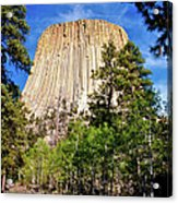 Devil's Tower Through The Trees Acrylic Print