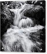 Devon River Monochrome Acrylic Print
