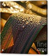 Dewy Leaves Acrylic Print