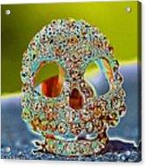 Dia De Los Muertos Skull Acrylic Print