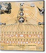 Diagram: American Union Acrylic Print