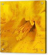 Diary Of A Buttercup Nbr 4 Acrylic Print