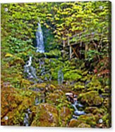 Dickson Falls In Fundy Np-nb Acrylic Print