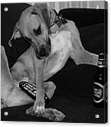 Diesel In Black And White Acrylic Print