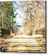 Different Seasons Acrylic Print