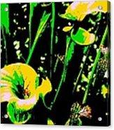 Digital Green Yellow Abstract Acrylic Print