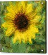 Digital Painting Series Sunflower Acrylic Print