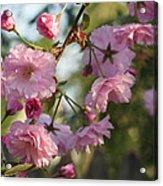 Digital Spring Acrylic Print