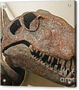 Dimetrodon Grandis Acrylic Print