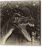 Dino's At The Zoo Come Here Cameraman In Heirloom Finish Acrylic Print