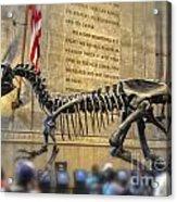 Dinosaur At The Natural History Museum Acrylic Print