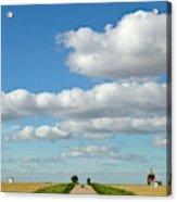 Dirt Road And Grain Elevator Williston Acrylic Print