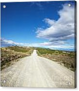Dirt Road Otago New Zealand Acrylic Print by Colin and Linda McKie