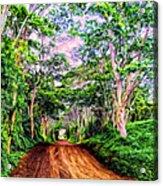 Dirt Road To Secret Beach On Kauai Acrylic Print