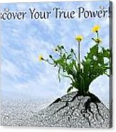 Discover Your True Power Acrylic Print