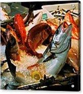 Display Fish Acrylic Print