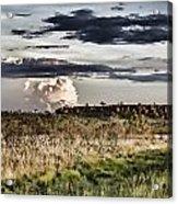 Distant Rock Acrylic Print