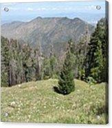 Distant View - Mount Lemmon Acrylic Print