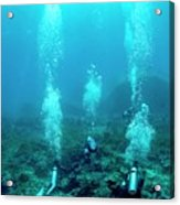 Divers Over A Coral Reef Acrylic Print