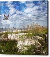 Divine Beach Day  Acrylic Print