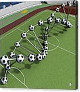 Dna String Of Soccer Player On The Field Of Stadium Acrylic Print