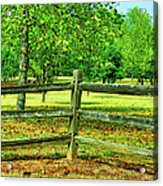 Do Not Fence Me In Acrylic Print