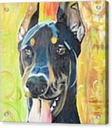 Doberman Acrylic Print by PainterArtist FIN