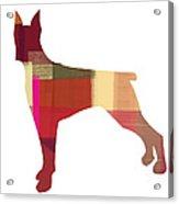 Doberman Pinscher Acrylic Print by Naxart Studio