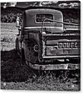 Dodge In The Zone Acrylic Print