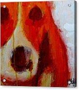 Dog 2  Acrylic Print