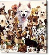 Dog And Puppies Acrylic Print by John YATO