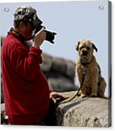 Dog Being Photographed Acrylic Print