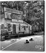 Dog Day Afternoon Bw Acrylic Print