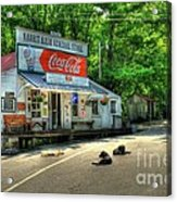 Dog Day Afternoon Acrylic Print by Mel Steinhauer
