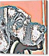 Dog Iron Door Knocker Acrylic Print