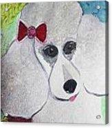 Dog Lover Acrylic Print