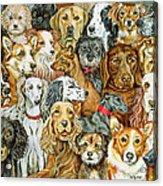 Dog Spread Acrylic Print by Ditz
