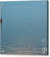 Dog Watch - Cedar Key Acrylic Print