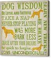 Dog Wisdom Acrylic Print
