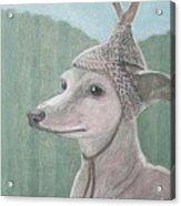 Dog With Antlers Acrylic Print