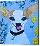 Doggy Time Acrylic Print
