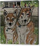 Dogs In Front Of The Gulf Station Acrylic Print
