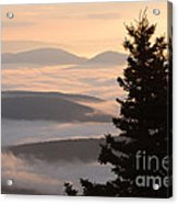 Dolly Sods Wilderness D300_18443 Acrylic Print