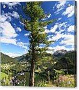 Dolomites - Tree Over The Valley Acrylic Print