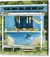 Dolphin Bar Acrylic Print