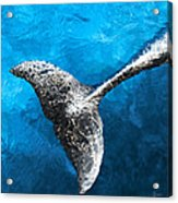 Dolphin Dancing With Light Acrylic Print