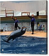 Dolphin Show - National Aquarium In Baltimore Md - 1212139 Acrylic Print