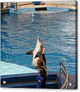 Dolphin Show - National Aquarium In Baltimore Md - 1212145 Acrylic Print by DC Photographer