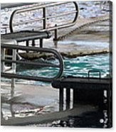 Dolphin Show - National Aquarium In Baltimore Md - 12122 Acrylic Print
